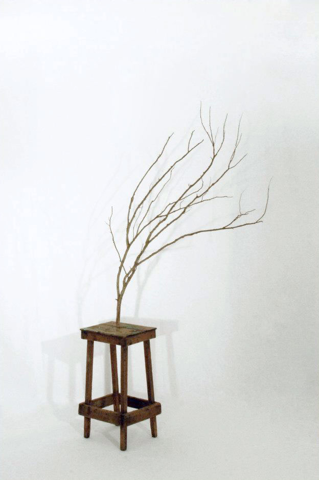 SITTING WOOD art installation by Giampaolo Marcantoni (Italy) for WU+S   (wakeupandsleep.org).  A futuristic vision of nature. A future where the trees do not sprout   from the ground but will be equipped with chairs, a wooden chair created   by the demolition of a tree.